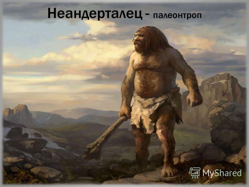 Неандерталец - палеонтроп