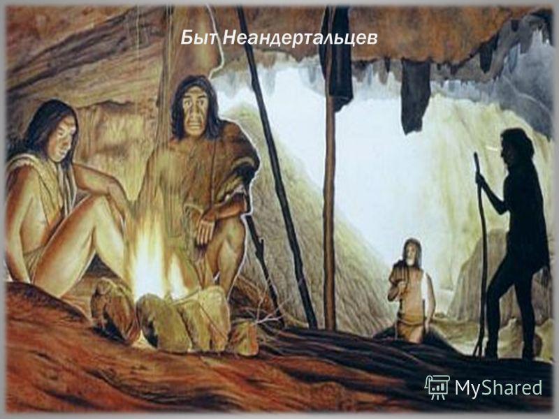 Быт Неандертальцев