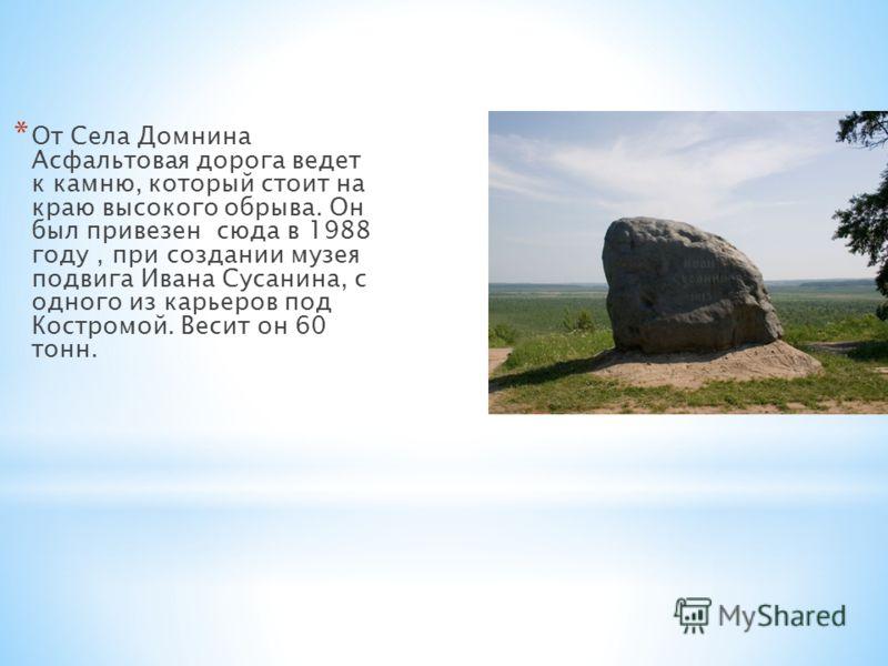 * От Села Домнина Асфальтовая дорога ведет к камню, который стоит на краю высокого обрыва. Он был привезен сюда в 1988 году, при создании музея подвига Ивана Сусанина, с одного из карьеров под Костромой. Весит он 60 тонн.