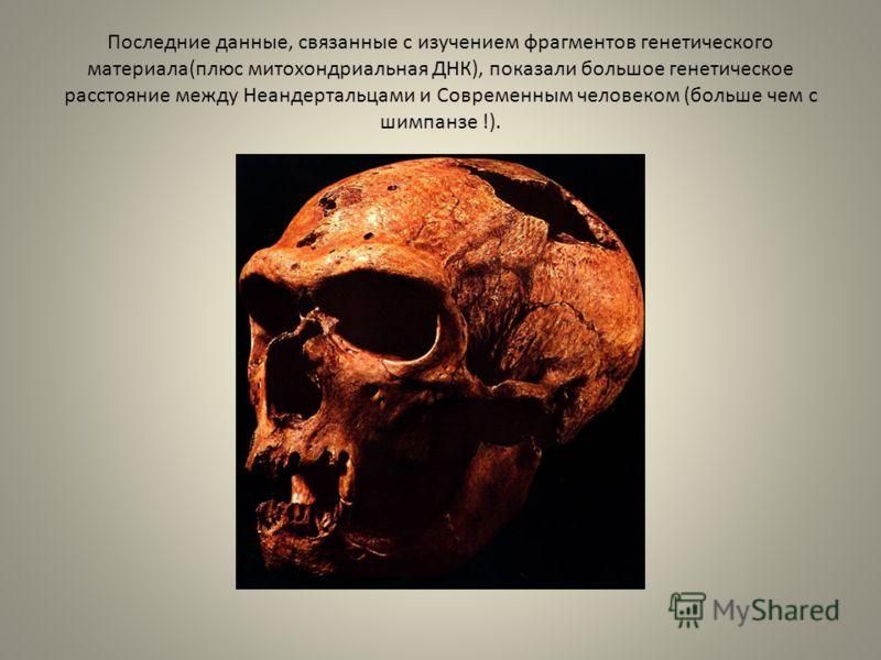 Последние данные, связанные с изучением фрагментов генетического материала(плюс митохондриальная ДНК), показали большое генетическое расстояние между Неандертальцами и Современным человеком (больше чем с шимпанзе !).