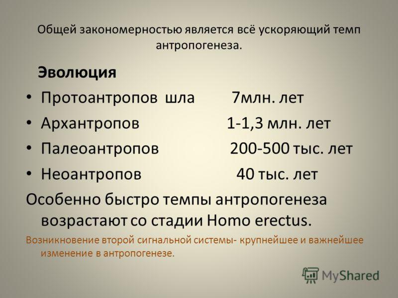 Общей закономерностью является всё ускоряющий темп антропогенеза. Эволюция Протоантропов шла 7млн. лет Архантропов 1-1,3 млн. лет Палеоантропов 200-500 тыс. лет Неоантропов 40 тыс. лет Особенно быстро темпы антропогенеза возрастают со стадии Homo ere