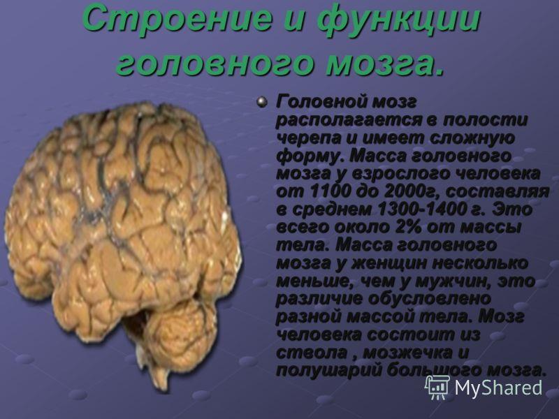 Строение и функции головного мозга. Головной мозг располагается в полости черепа и имеет сложную форму. Масса головного мозга у взрослого человека от 1100 до 2000г, составляя в среднем 1300-1400 г. Это всего около 2% от массы тела. Масса головного мо