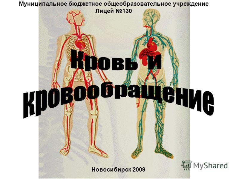 Муниципальное бюджетное общеобразовательное учреждение Лицей 130 Новосибирск 2009