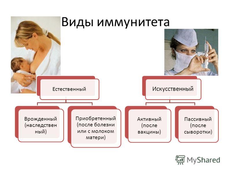 Виды иммунитета Естестве нный Врожденный (наследствен ный) Приобретенный (после болезни или с молоком матери) Искусственный Активный (после вакцины) Пассивный (после сыворотки)