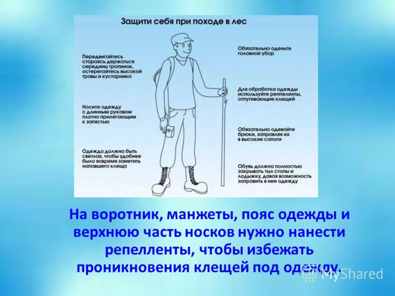 На воротник, манжеты, пояс одежды и верхнюю часть носков нужно нанести репелленты, чтобы избежать проникновения клещей под одежду.