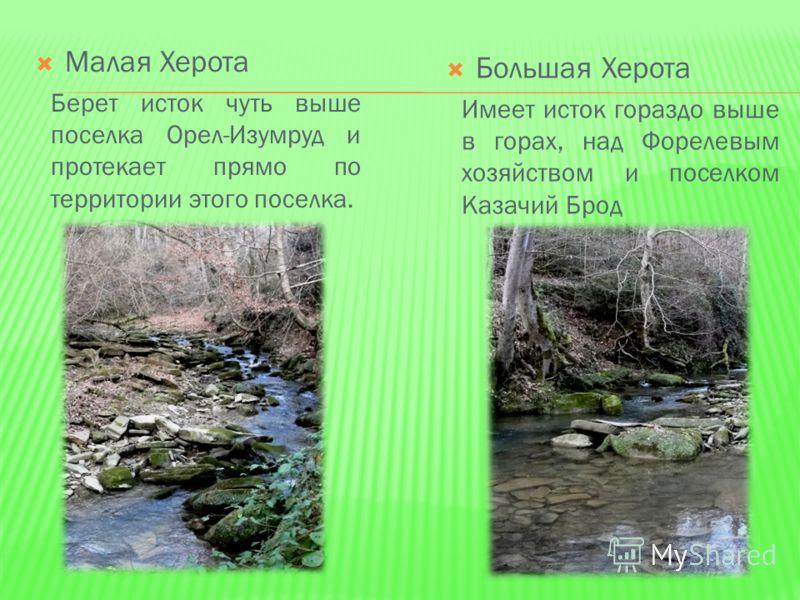 На нашем материке текут тысячи рек, сотни их протекают по территории Краснодарского края и впадают в Черное море. Но я хочу сегодня рассказать только об одной. Совсем маленькой реке. Ее не на каждой карте найдешь. Херóта – это небольшая речка, впадаю