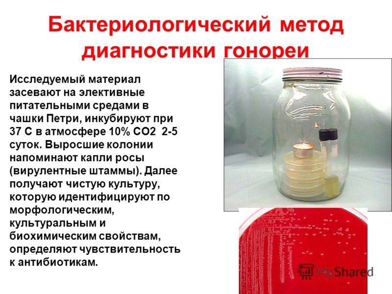 Бактериологический метод диагностики гонореи Исследуемый материал засевают на элективные питательными средами в чашки Петри, инкубируют при 37 С в атмосфере 10% СО2 2-5 суток. Выросшие колонии напоминают капли росы (вирулентные штаммы). Далее получаю