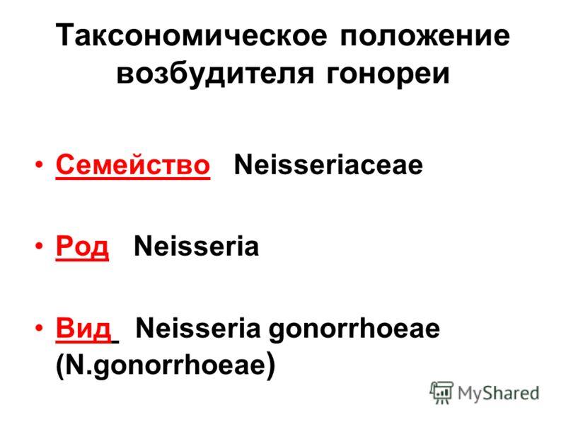 Таксономическое положение возбудителя гонореи Семейство Neisseriaceae Род Neisseria Вид Neisseria gonorrhoeae (N.gonorrhoeae )