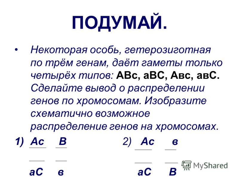 ПОДУМАЙ. Некоторая особь, гетерозиготная по трём генам, даёт гаметы только четырёх типов: АВс, аВС, Авс, авС. Сделайте вывод о распределении генов по хромосомам. Изобразите схематично возможное распределение генов на хромосомах. 1)Ас В 2) Ас в аС в а