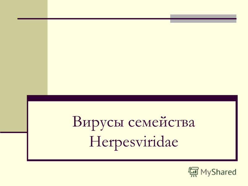 Вирусы семейства Herpesviridae