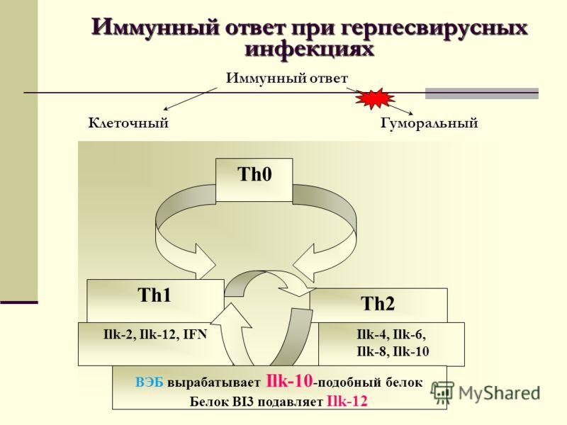Иммунный ответ при герпесвирусных инфекциях Иммунный ответ Клеточный Гуморальный Th0 Th1 Th2 Ilk-2, Ilk-12, IFNIlk-4, Ilk-6, Ilk-8, Ilk-10 ВЭБ вырабатывает Ilk-10 -подобный белок Белок BI3 подавляет Ilk-12