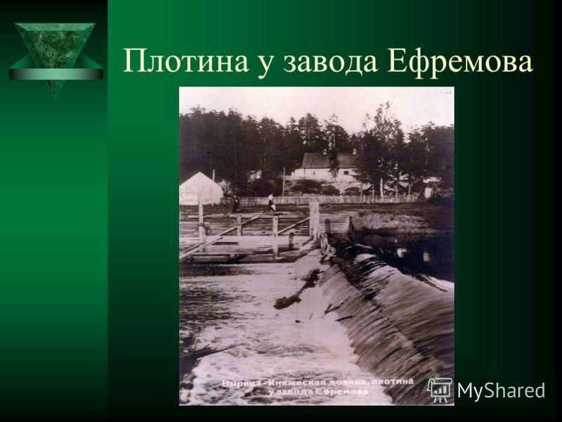 Антип Харитонович с детьми Иваном и Василием