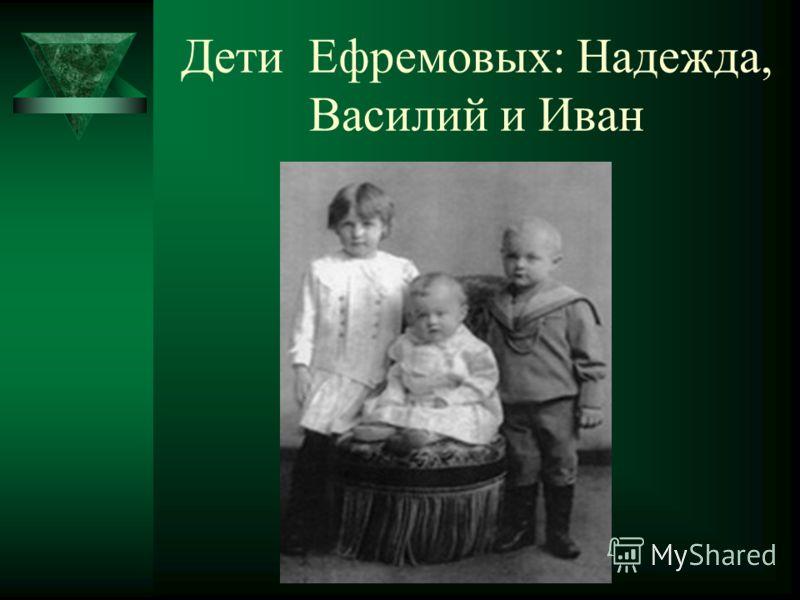 Плотина у завода Ефремова
