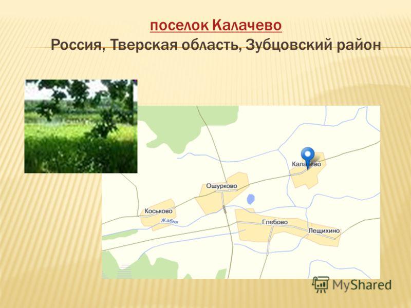 поселок Калачево поселок Калачево Россия, Тверская область, Зубцовский район
