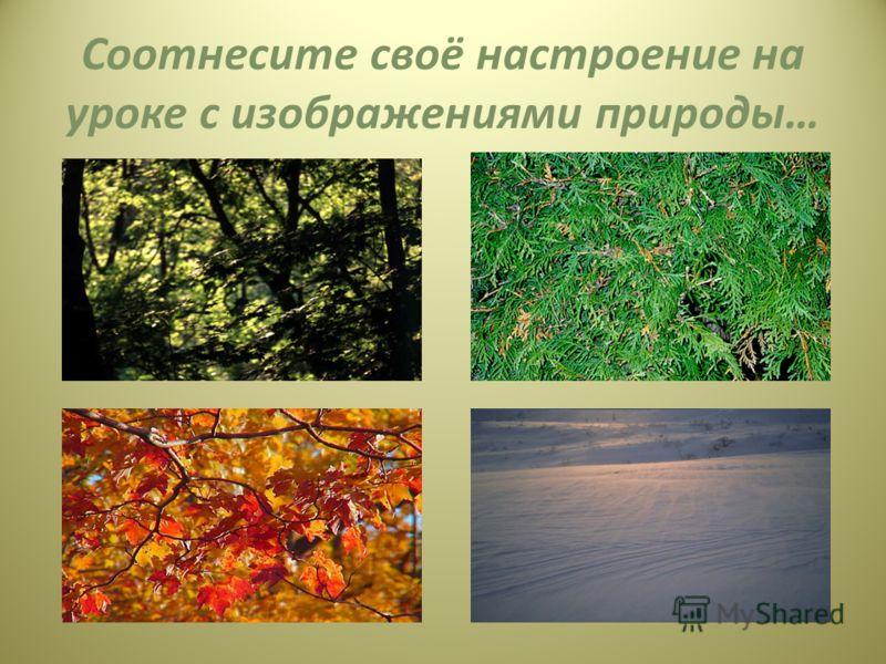 Соотнесите своё настроение на уроке с изображениями природы…