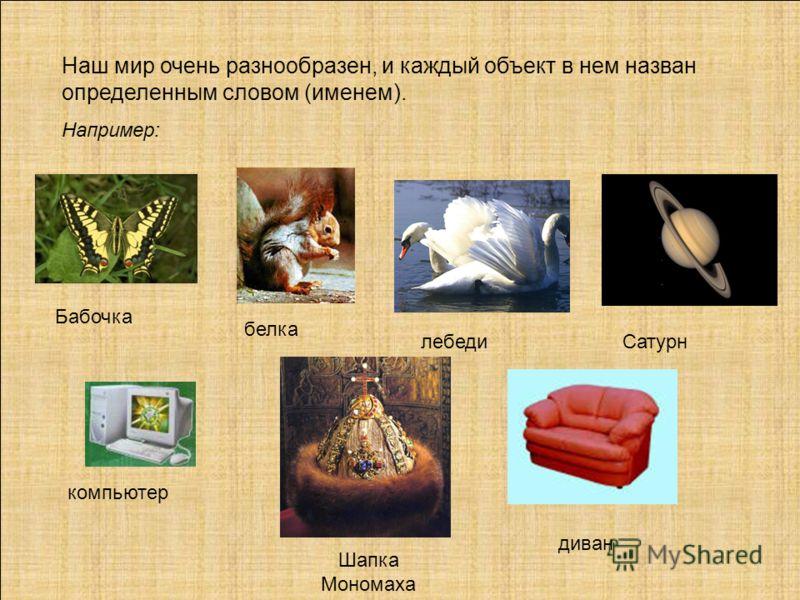 Наш мир очень разнообразен, и каждый объект в нем назван определенным словом (именем). Например: Бабочка белка лебедиСатурн компьютер Шапка Мономаха диван