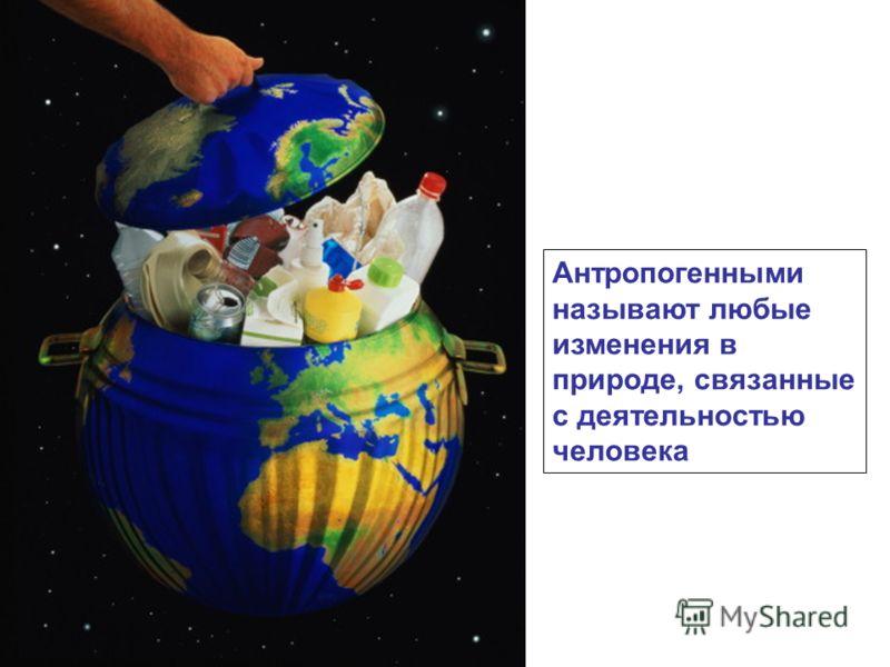 Антропогенными называют любые изменения в природе, связанные с деятельностью человека