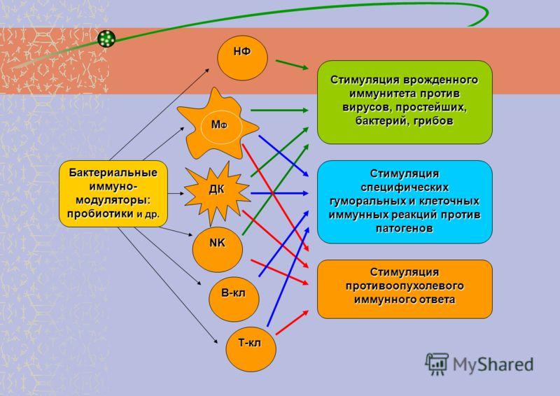 Как повысить иммунитет против грибка