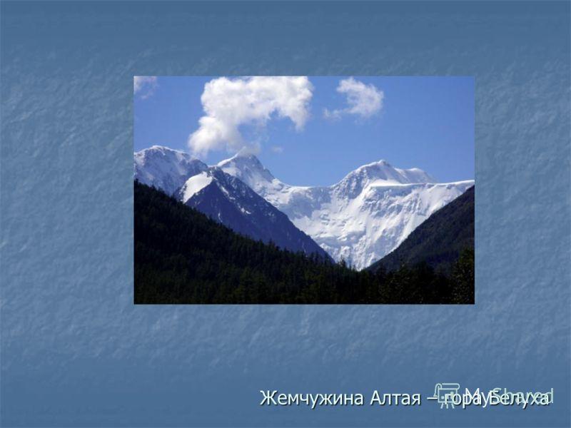 Жемчужина Алтая – гора Белуха