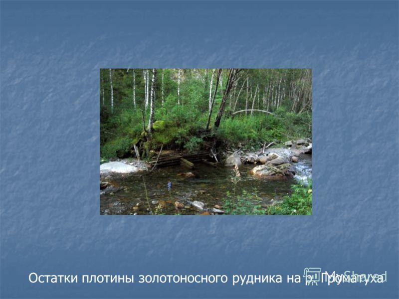 Остатки плотины золотоносного рудника на р. Громатуха