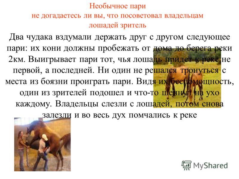 Необычное пари не догадаетесь ли вы, что посоветовал владельцам лошадей зритель Два чудака вздумали держать друг с другом следующее пари: их кони должны пробежать от дома до берега реки 2км. Выигрывает пари тот, чья лошадь придет к реке не первой, а