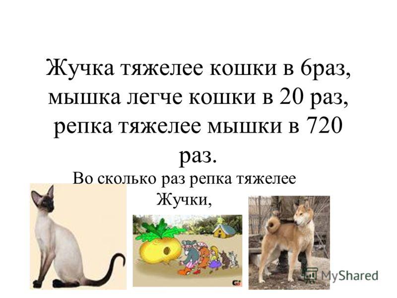 Жучка тяжелее кошки в 6раз, мышка легче кошки в 20 раз, репка тяжелее мышки в 720 раз. Во сколько раз репка тяжелее Жучки,