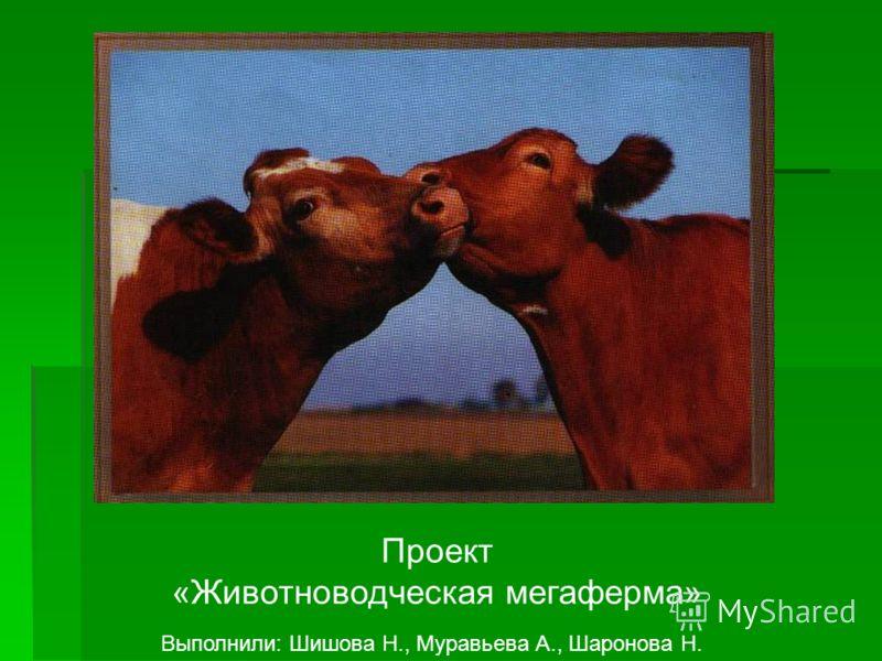 Проект «Животноводческая мегаферма» Выполнили: Шишова Н., Муравьева А., Шаронова Н.