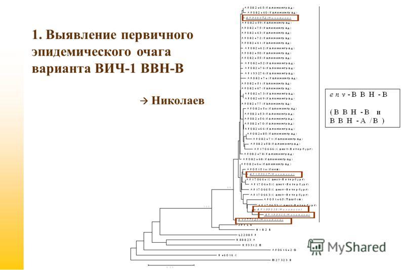 1. Выявление первичного эпидемического очага варианта ВИЧ-1 ВВН-В Николаев