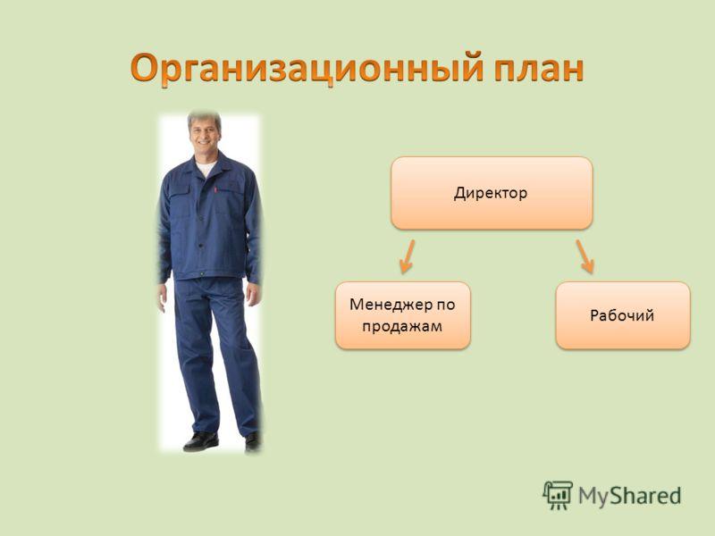Директор Рабочий Менеджер по продажам
