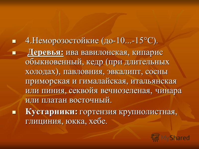 4.Неморозостойкие (до-10...-15°С). 4.Неморозостойкие (до-10...-15°С). Деревья: ива вавилонская, кипарис обыкновенный, кедр (при длительных холодах), павловния, эвкалипт, сосны приморская и гималайская, итальянская или пиния, секвойя вечнозеленая, чин