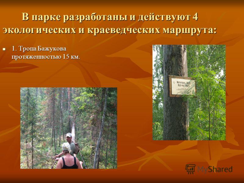 В парке разработаны и действуют 4 экологических и краеведческих маршрута: 1. Тропа Бажукова протяженностью 15 км. 1. Тропа Бажукова протяженностью 15 км.