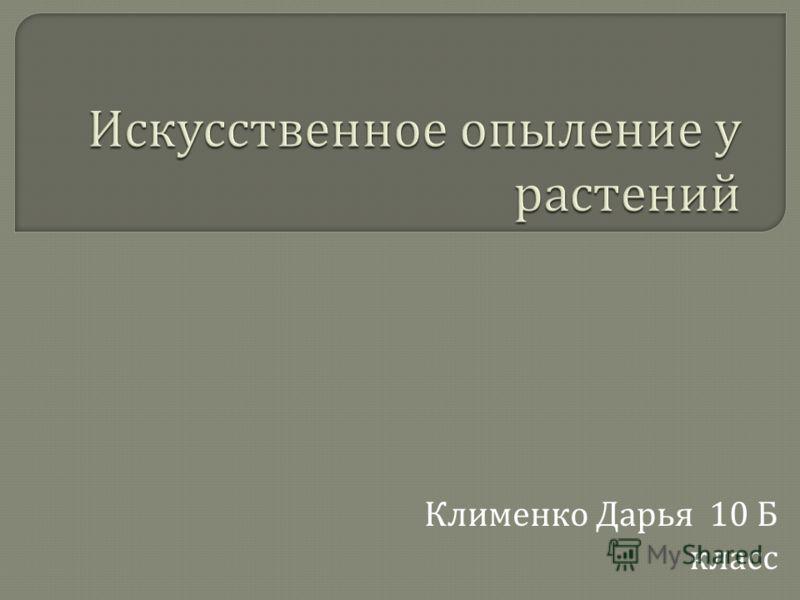 Клименко Дарья 10 Б класс