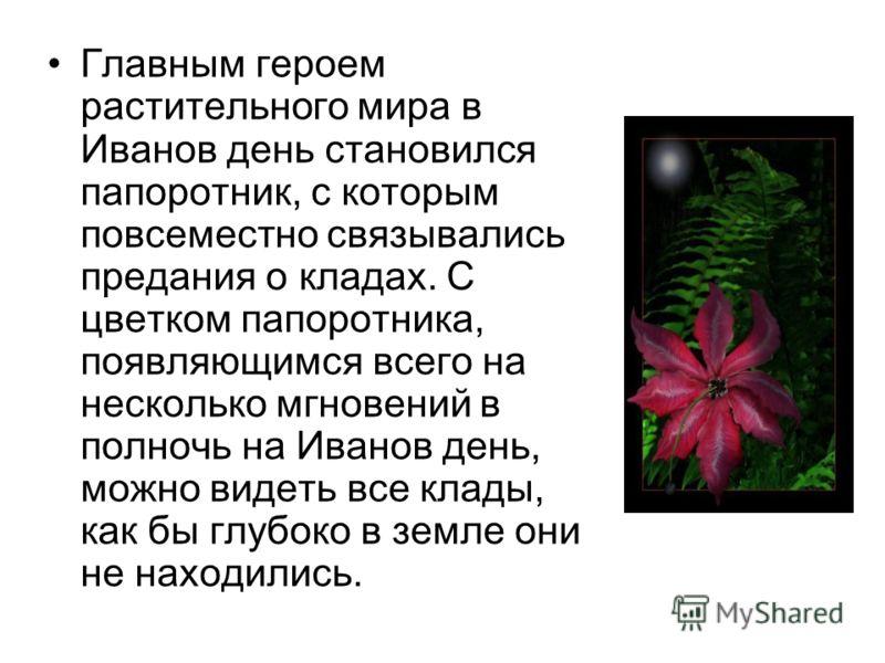 Главным героем растительного мира в Иванов день становился папоротник, с которым повсеместно связывались предания о кладах. С цветком папоротника, появляющимся всего на несколько мгновений в полночь на Иванов день, можно видеть все клады, как бы глуб