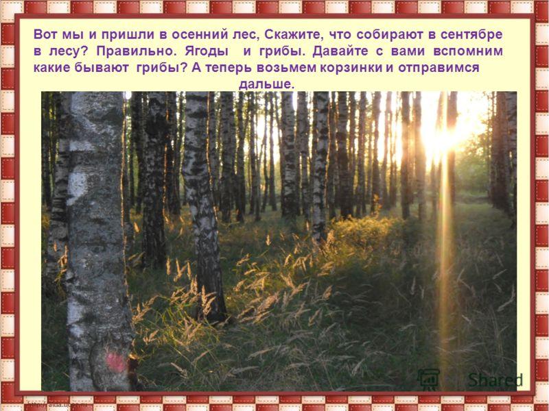Вот мы и пришли в осенний лес, Скажите, что собирают в сентябре в лесу? Правильно. Ягоды и грибы. Давайте с вами вспомним какие бывают грибы? А теперь возьмем корзинки и отправимся дальше.