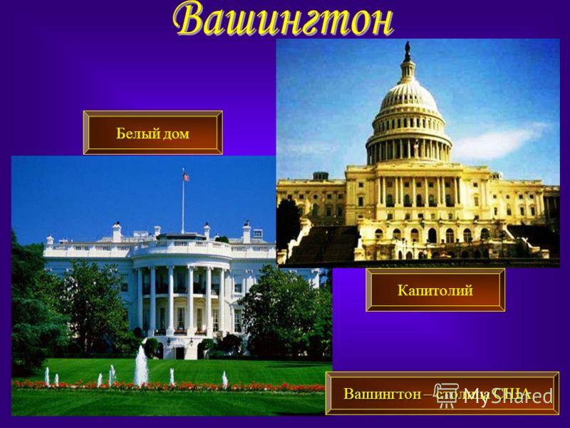 Вашингтон – столица США. Вашингтон – столица США.. Белый дом Капитолий