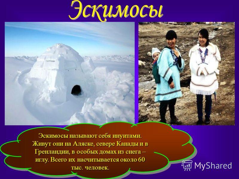 Эскимосы называют себя инуитами. Живут они на Аляске, севере Канады и в Гренландии, в особых домах из снега – иглу. Всего их насчитывается около 60 тыс. человек.