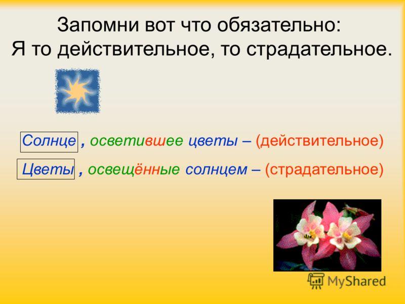 Запомни вот что обязательно: Я то действительное, то страдательное. Солнце, осветившее цветы – (действительное) Цветы, освещённые солнцем – (страдательное)