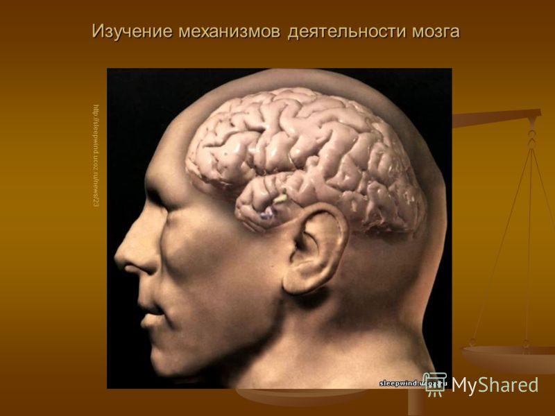 Изучение механизмов деятельности мозга http://sleepwind.ucoz.ru/news/23