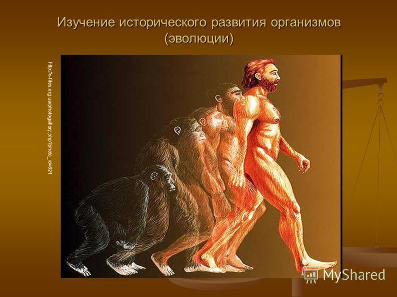 Изучение исторического развития организмов (эволюции) http://x-files.org.ua/photogallery.php?photo_id=621