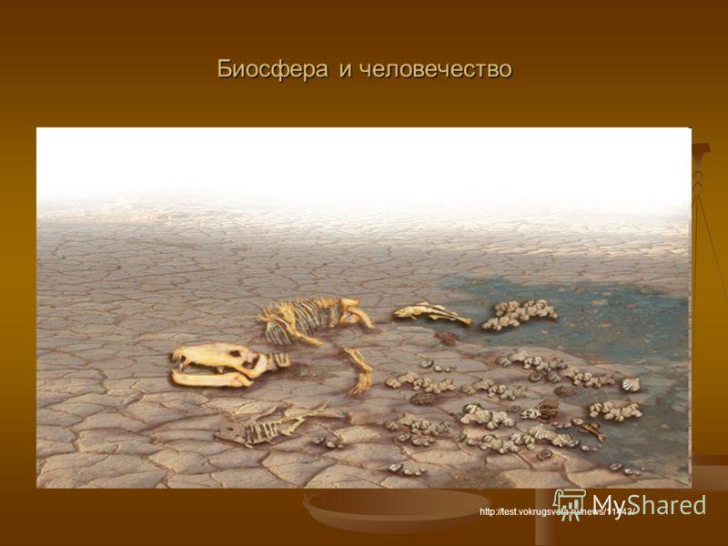Биосфера и человечество http://test.vokrugsveta.ru/news/11443/