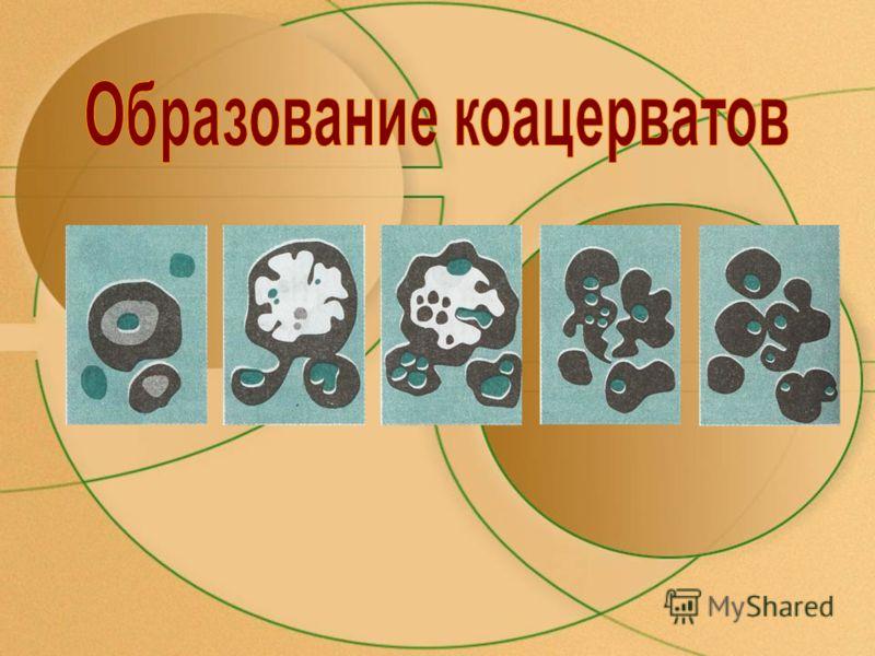 Ограниченные молекулы имеют большую молекулярную массу и тоже окружены водной оболочкой. При определенных условиях водная оболочка приобретает четкие границы и отщепляет молекулу от окружающего раствора. Молекулы, объединяясь, образуют коацерват – мо