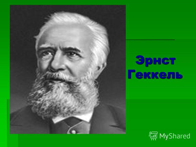 Термин «Экология» ввел в 1866 году немецкий натуралист Эрнст Геккель