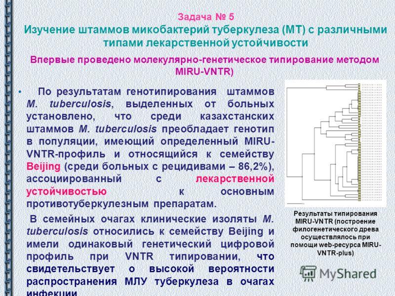 Задача 5 Изучение штаммов микобактерий туберкулеза (МТ) с различными типами лекарственной устойчивости По результатам генотипирования штаммов M. tuberculosis, выделенных от больных установлено, что среди казахстанских штаммов M. tuberculosis преоблад