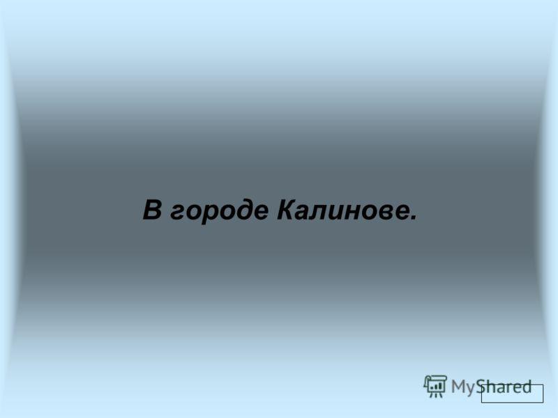 В городе Калинове.