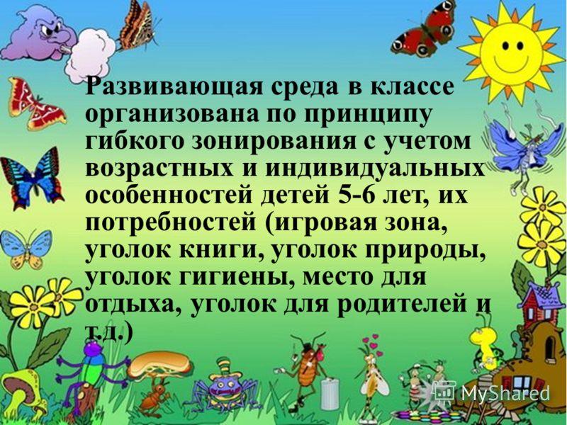 Развивающая среда в классе организована по принципу гибкого зонирования с учетом возрастных и индивидуальных особенностей детей 5-6 лет, их потребностей (игровая зона, уголок книги, уголок природы, уголок гигиены, место для отдыха, уголок для родител