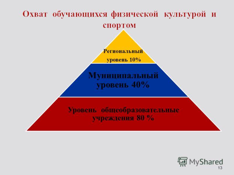 Региональный уровень 10% Муниципальный уровень 40% Уровень общеобразовательные учреждения 80 % 13