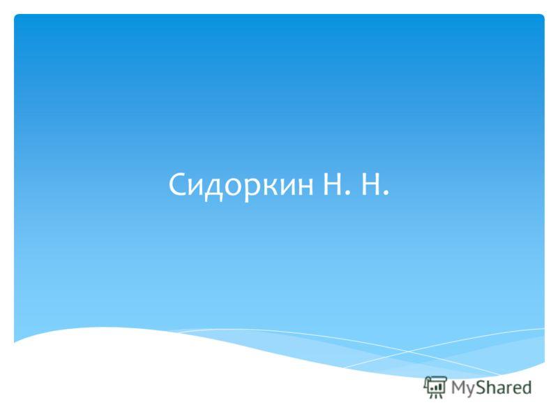 Сидоркин Н. Н.