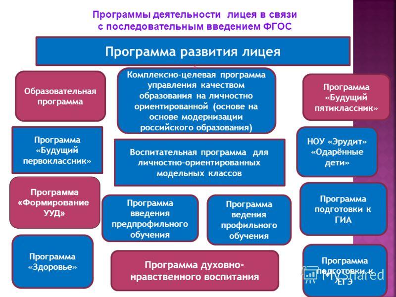 Программа развития лицея Воспитательная программа для личностно-ориентированных модельных классов Программа «Будущий первоклассник» Программа введения предпрофильного обучения Программа подготовки к ЕГЭ Комплексно-целевая программа управления качеств