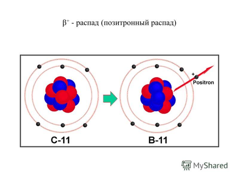 β + - распад (позитронный распад)