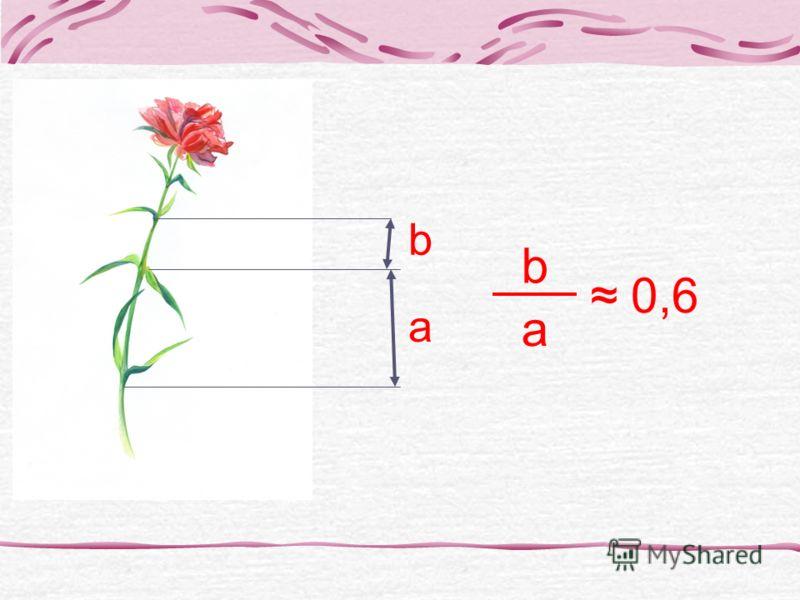 a b b a 0,6